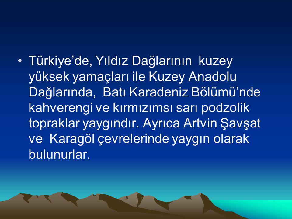 Türkiye'de, Yıldız Dağlarının kuzey yüksek yamaçları ile Kuzey Anadolu Dağlarında, Batı Karadeniz Bölümü'nde kahverengi ve kırmızımsı sarı podzolik topraklar yaygındır.
