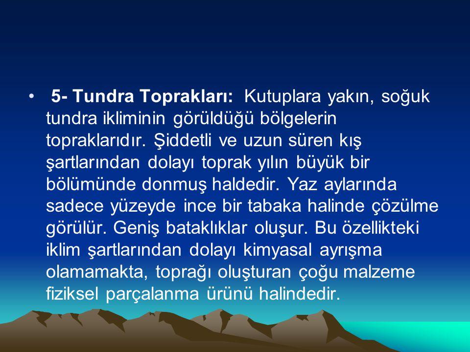 5- Tundra Toprakları: Kutuplara yakın, soğuk tundra ikliminin görüldüğü bölgelerin topraklarıdır.