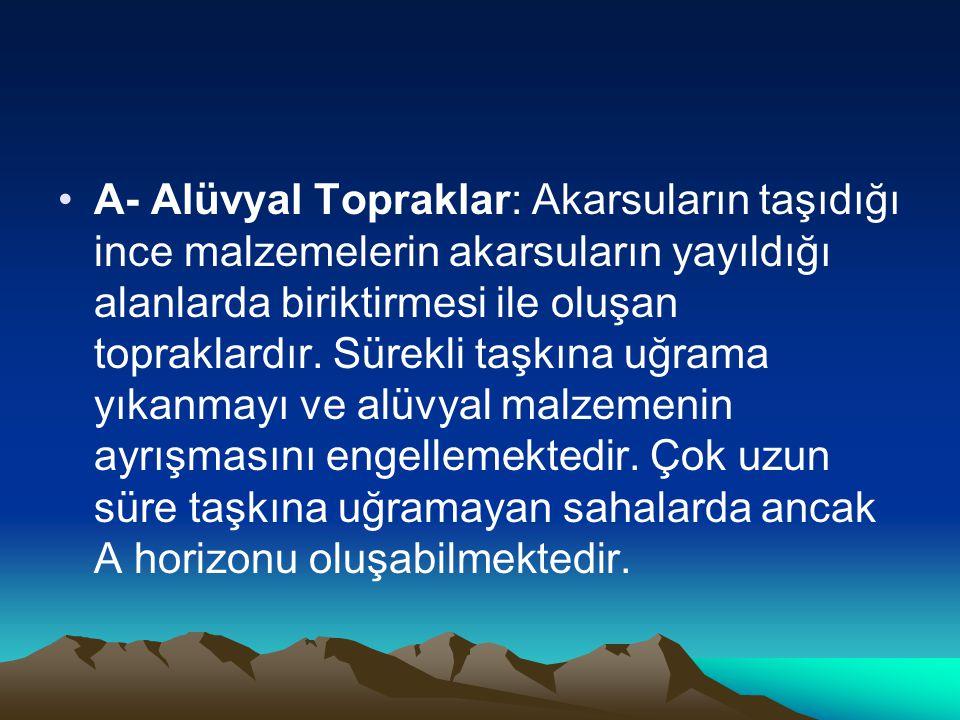 A- Alüvyal Topraklar: Akarsuların taşıdığı ince malzemelerin akarsuların yayıldığı alanlarda biriktirmesi ile oluşan topraklardır.