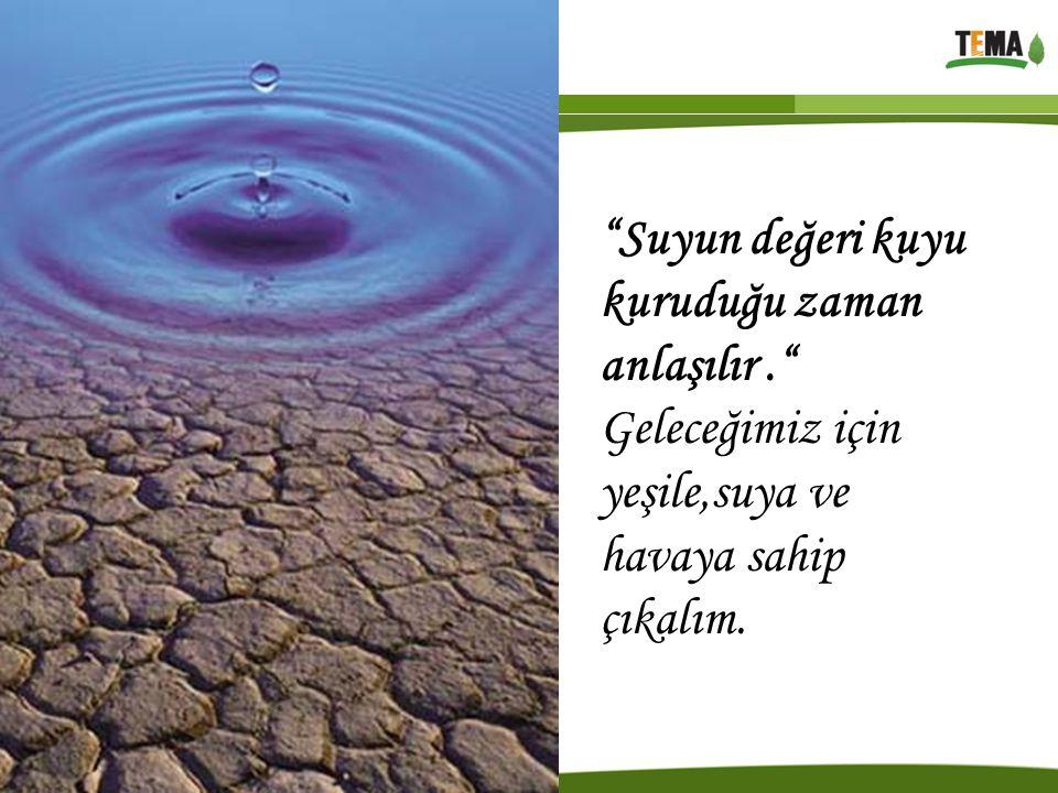 Suyun değeri kuyu kuruduğu zaman anlaşılır