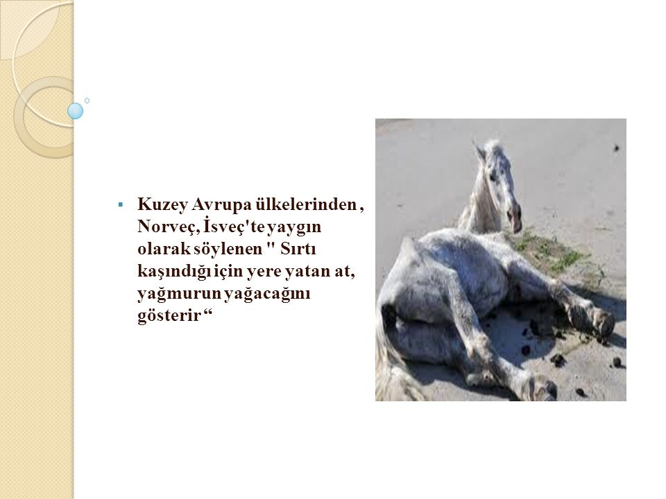 Kuzey Avrupa ülkelerinden , Norveç, İsveç te yaygın olarak söylenen Sırtı kaşındığı için yere yatan at, yağmurun yağacağını gösterir
