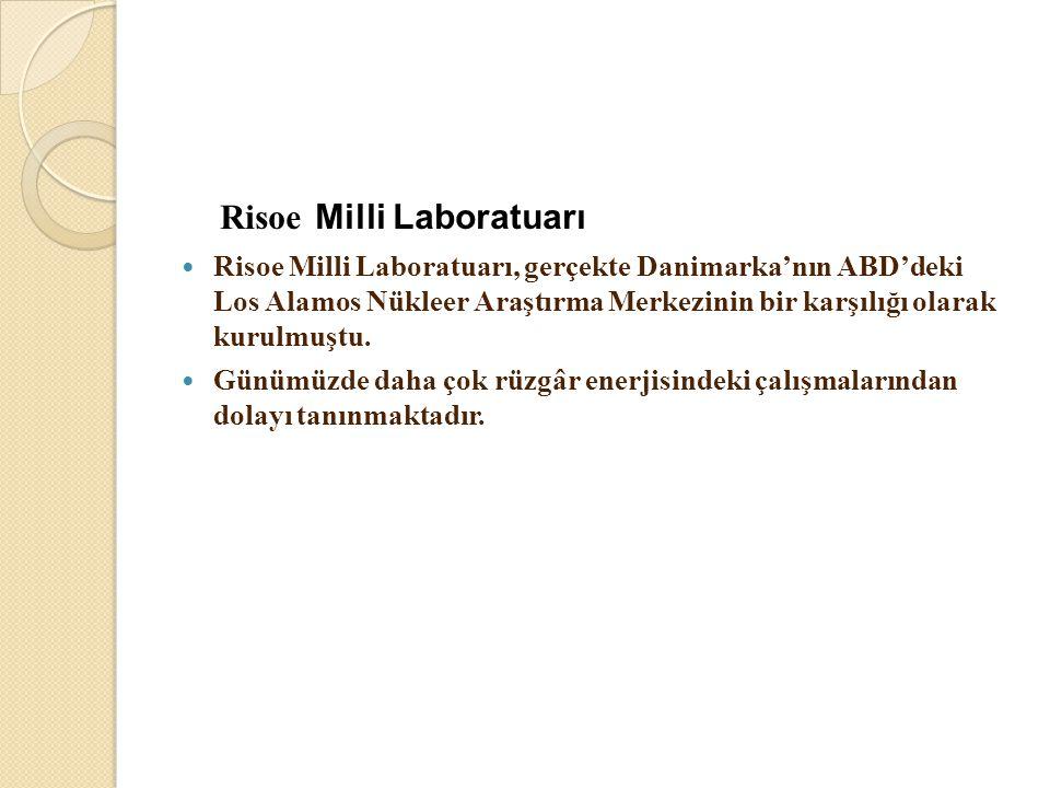 Risoe Milli Laboratuarı