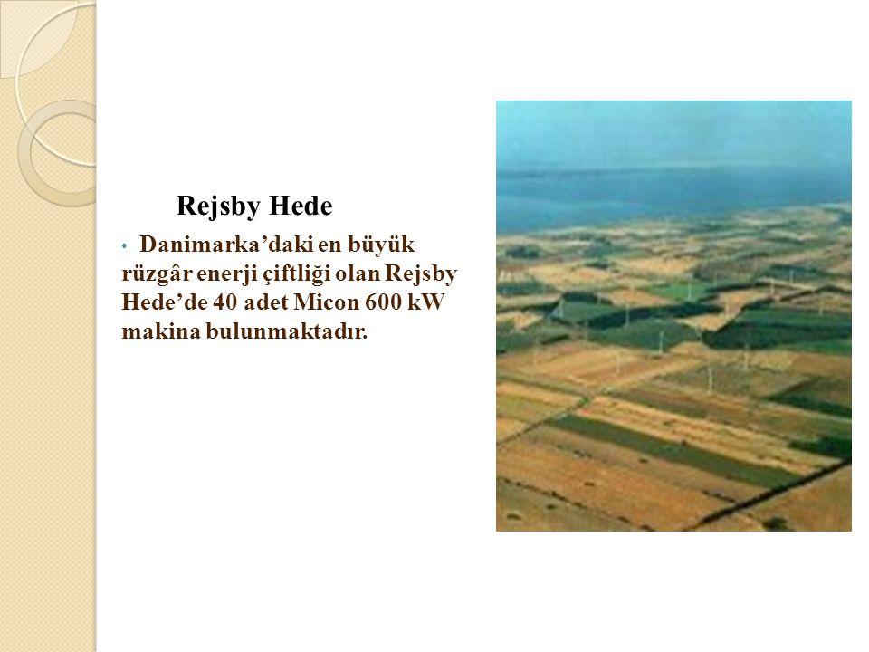 Rejsby Hede Danimarka'daki en büyük rüzgâr enerji çiftliği olan Rejsby Hede'de 40 adet Micon 600 kW makina bulunmaktadır.