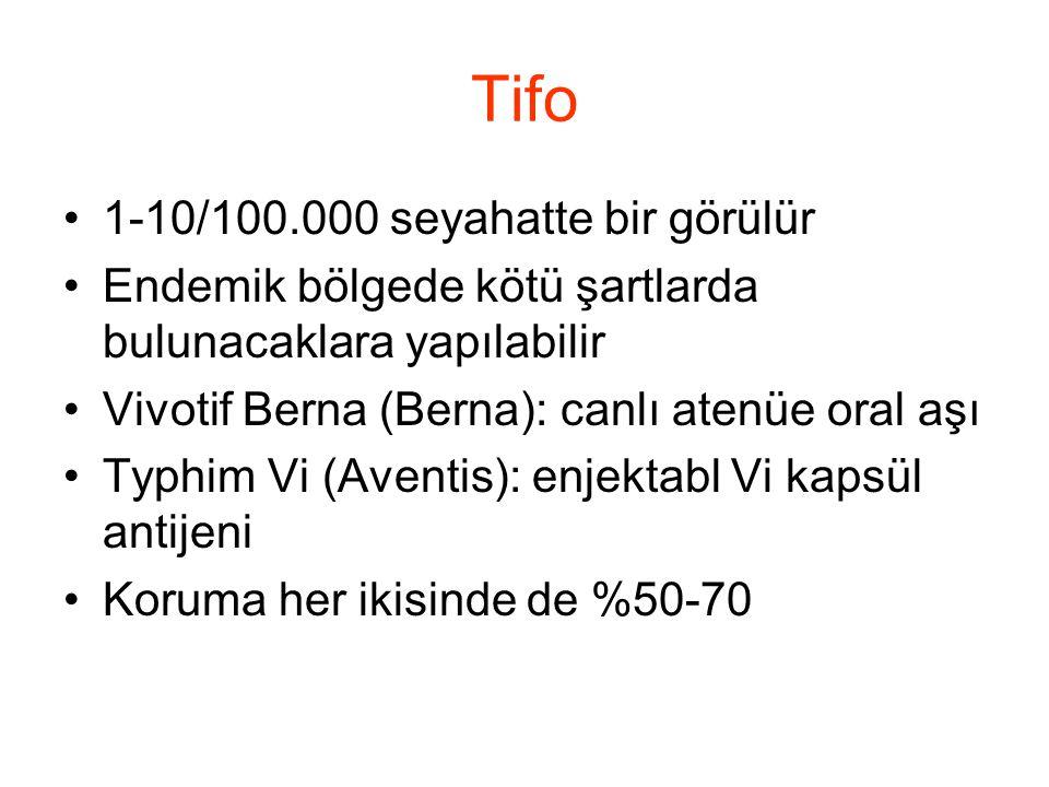 Tifo 1-10/100.000 seyahatte bir görülür