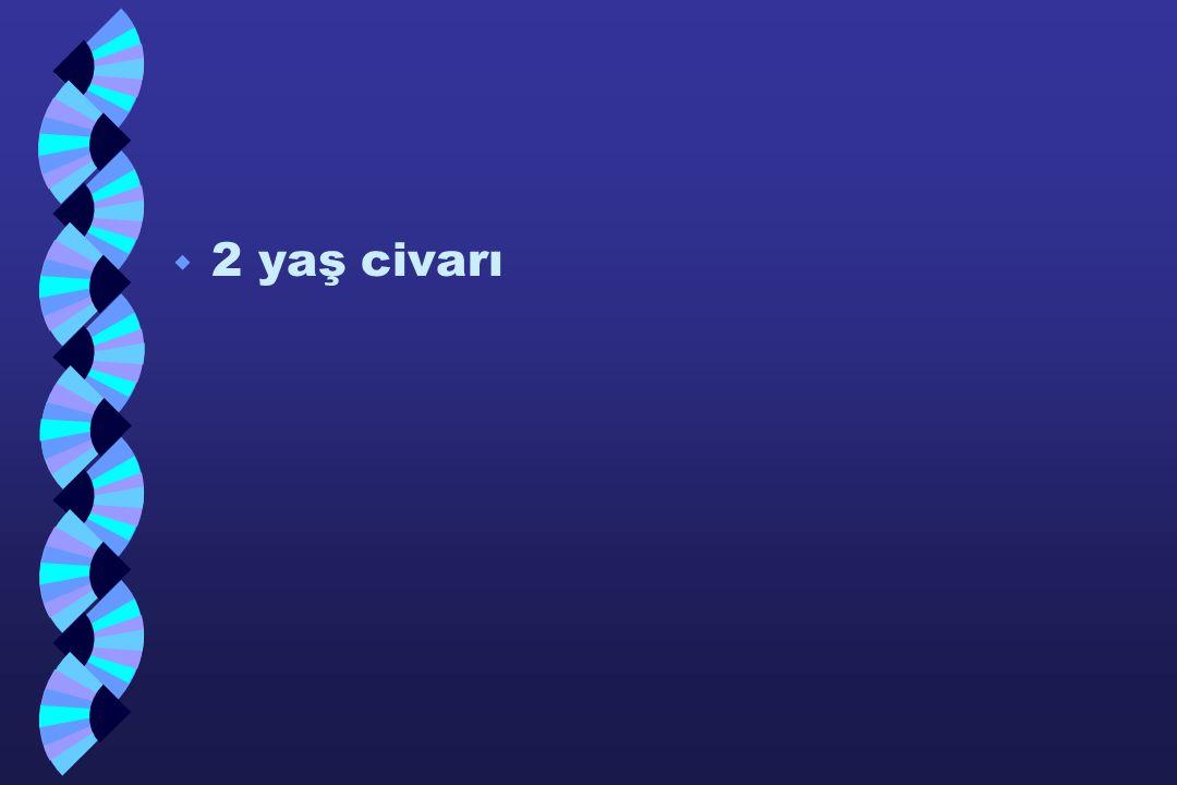 2 yaş civarı