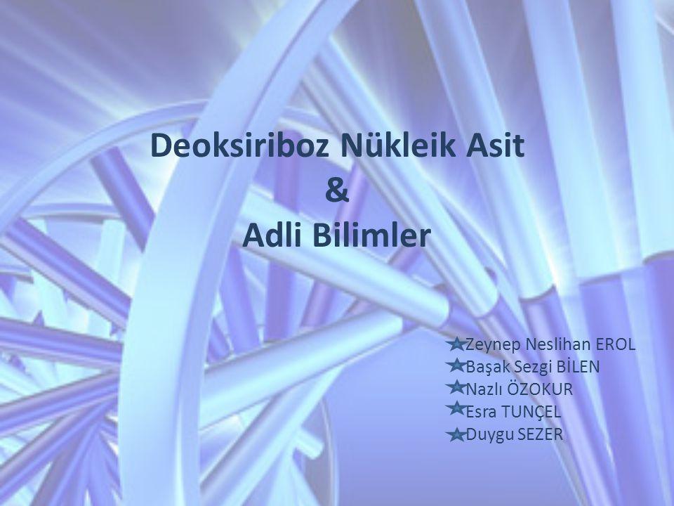 Deoksiriboz Nükleik Asit & Adli Bilimler