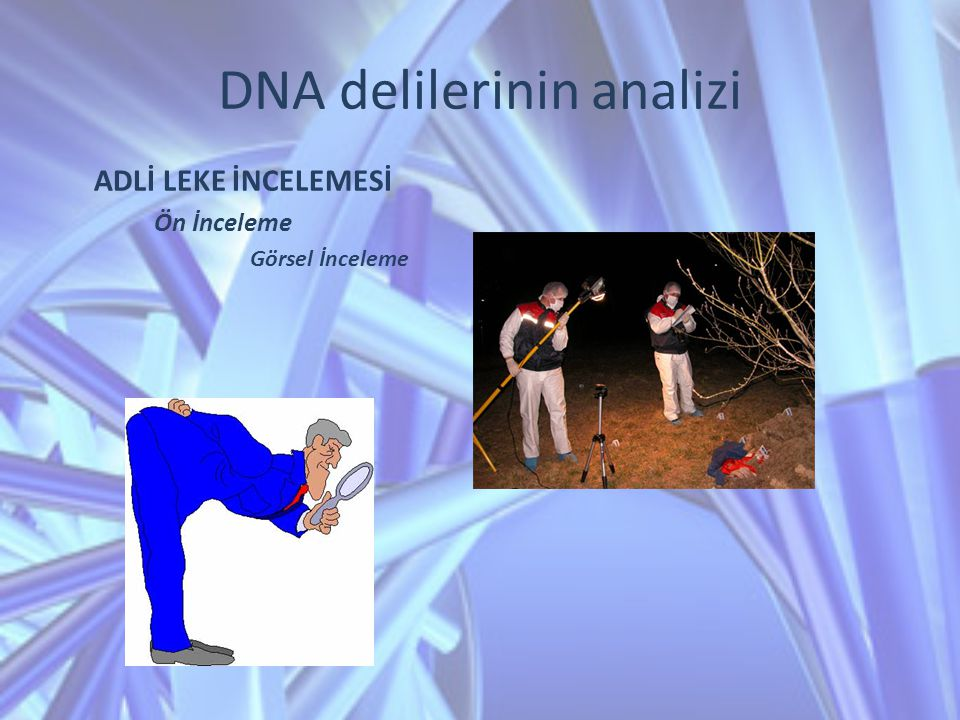 DNA delilerinin analizi