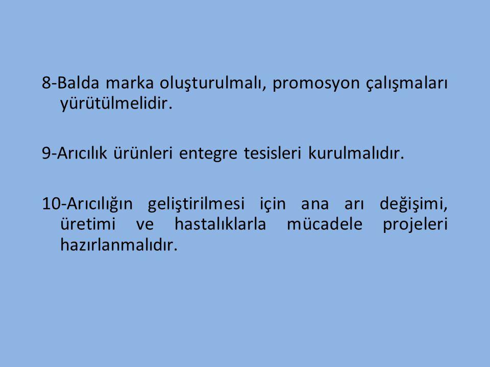 8-Balda marka oluşturulmalı, promosyon çalışmaları yürütülmelidir.