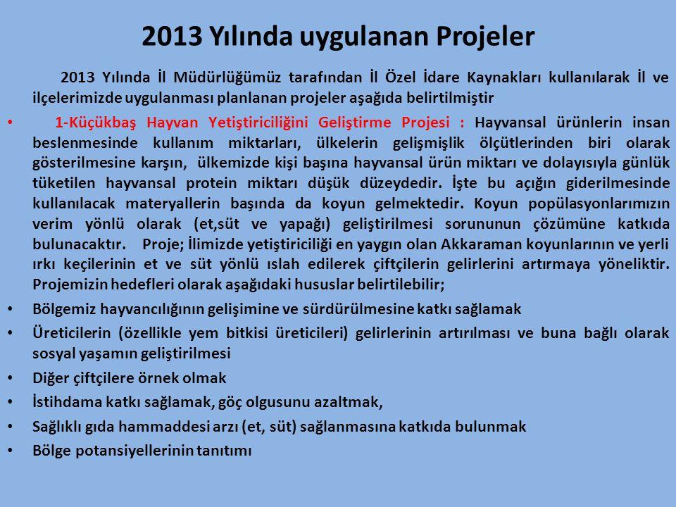 2013 Yılında uygulanan Projeler
