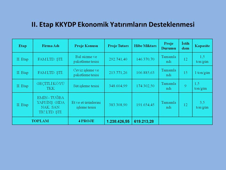 II. Etap KKYDP Ekonomik Yatırımların Desteklenmesi
