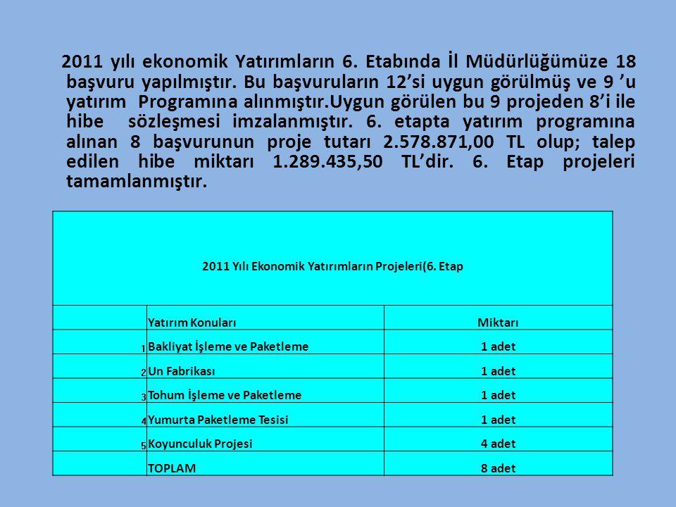 2011 Yılı Ekonomik Yatırımların Projeleri(6. Etap