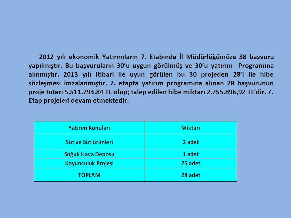 2012 yılı ekonomik Yatırımların 7