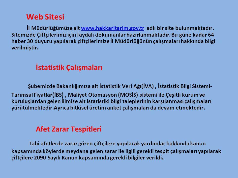 Web Sitesi