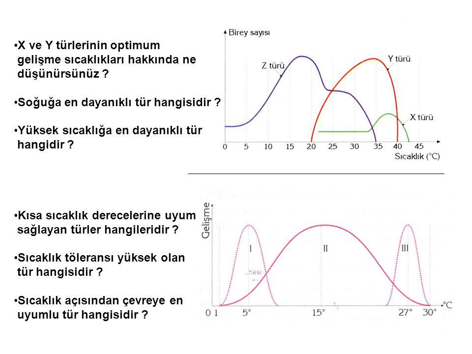 X ve Y türlerinin optimum