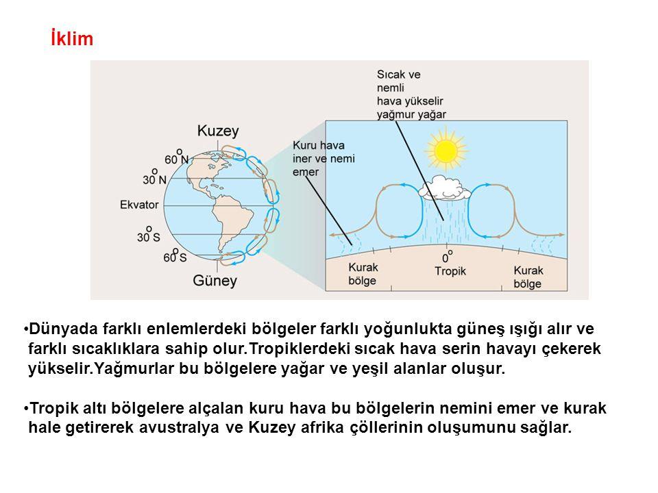 İklim Dünyada farklı enlemlerdeki bölgeler farklı yoğunlukta güneş ışığı alır ve.