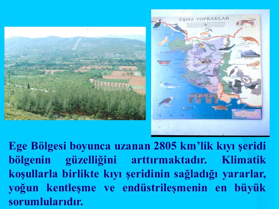 Ege Bölgesi boyunca uzanan 2805 km'lik kıyı şeridi bölgenin güzelliğini arttırmaktadır.