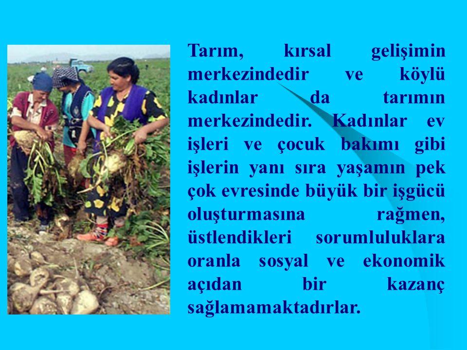 Tarım, kırsal gelişimin merkezindedir ve köylü kadınlar da tarımın merkezindedir.