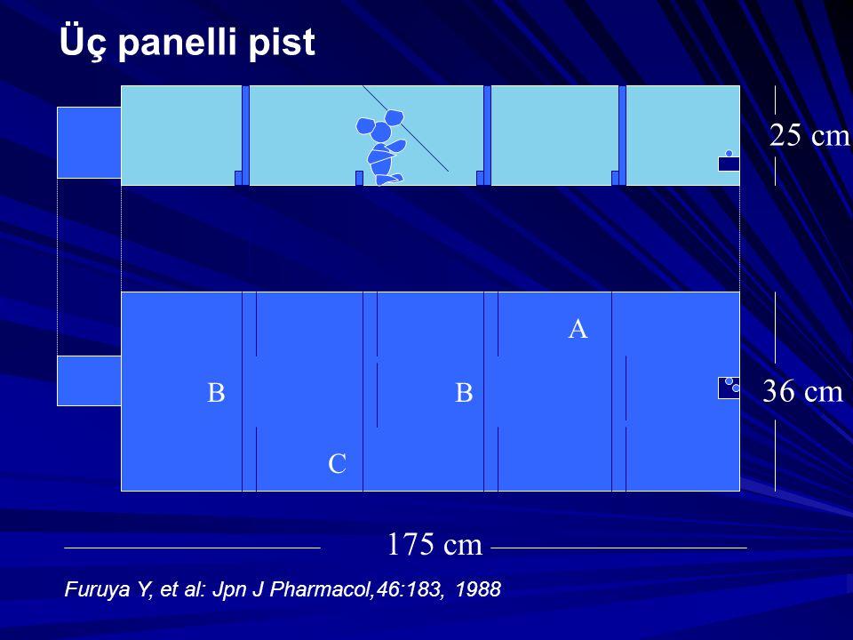 Üç panelli pist 25 cm 36 cm 175 cm A B B C