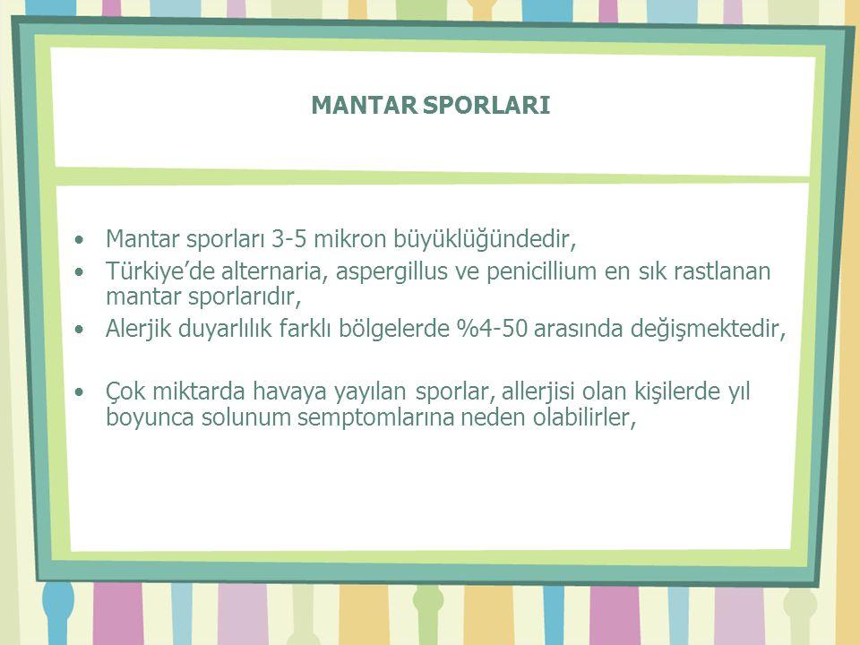 MANTAR SPORLARI Mantar sporları 3-5 mikron büyüklüğündedir, Türkiye'de alternaria, aspergillus ve penicillium en sık rastlanan mantar sporlarıdır,