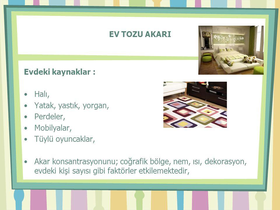 EV TOZU AKARI Evdeki kaynaklar : Halı, Yatak, yastık, yorgan, Perdeler, Mobilyalar, Tüylü oyuncaklar,