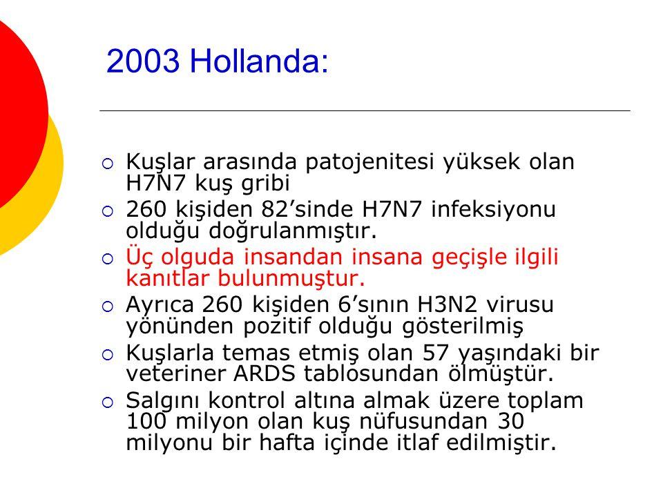 2003 Hollanda: Kuşlar arasında patojenitesi yüksek olan H7N7 kuş gribi