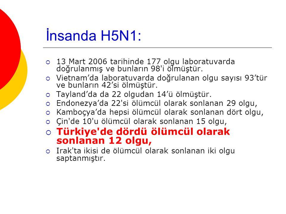 İnsanda H5N1: Türkiye de dördü ölümcül olarak sonlanan 12 olgu,
