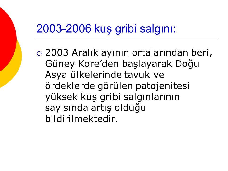 2003-2006 kuş gribi salgını: