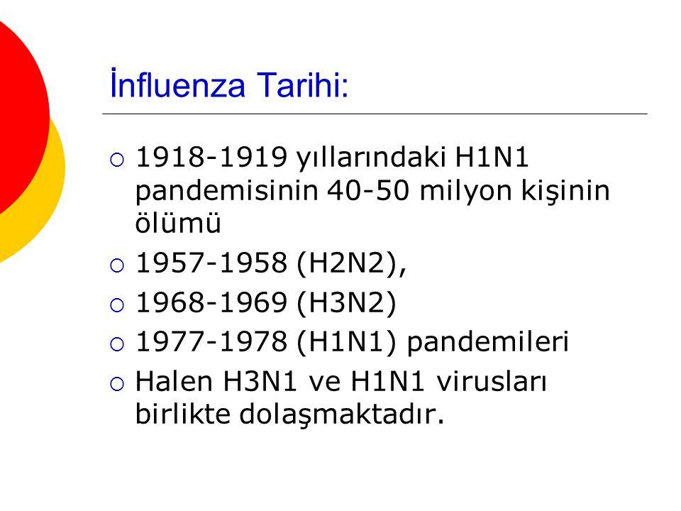 İnfluenza Tarihi: 1918-1919 yıllarındaki H1N1 pandemisinin 40-50 milyon kişinin ölümü. 1957-1958 (H2N2),