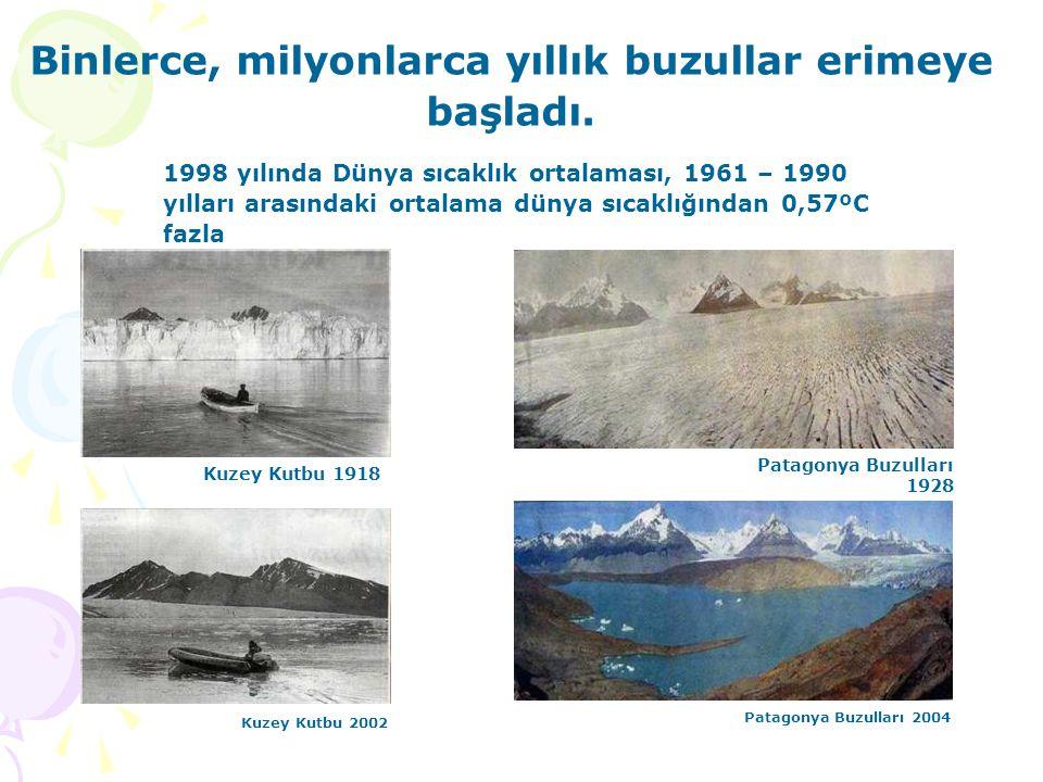 Binlerce, milyonlarca yıllık buzullar erimeye başladı.