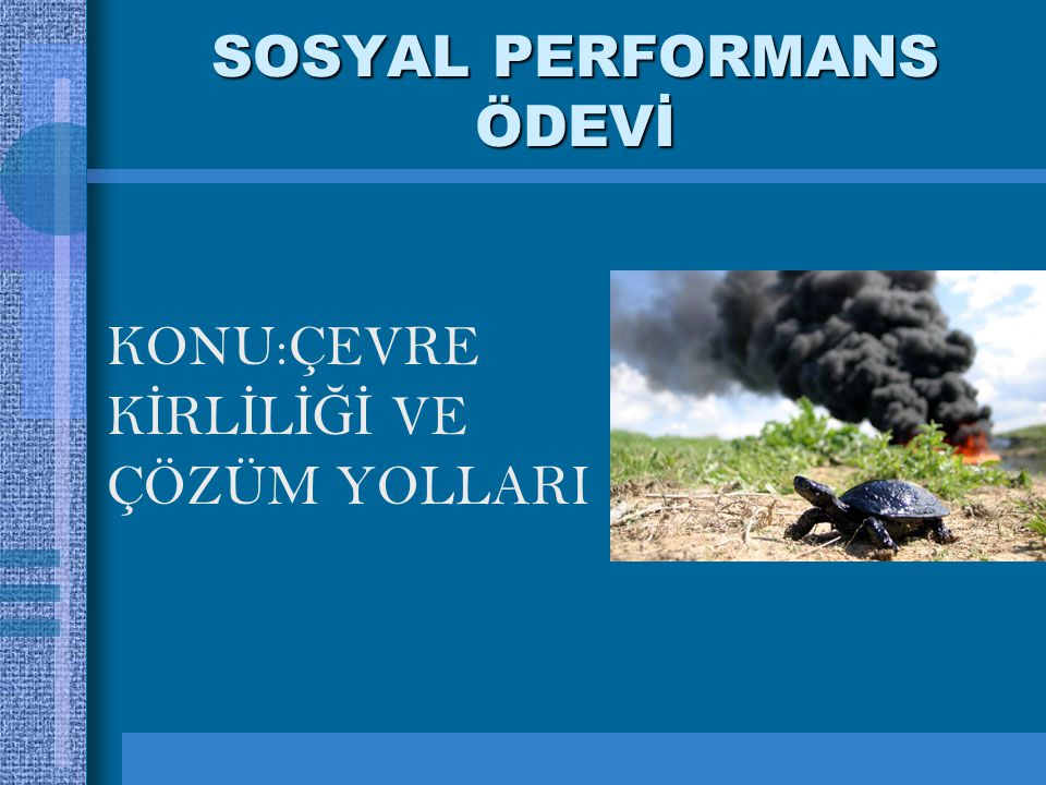 SOSYAL PERFORMANS ÖDEVİ
