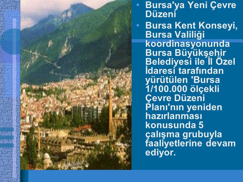 Bursa ya Yeni Çevre Düzeni