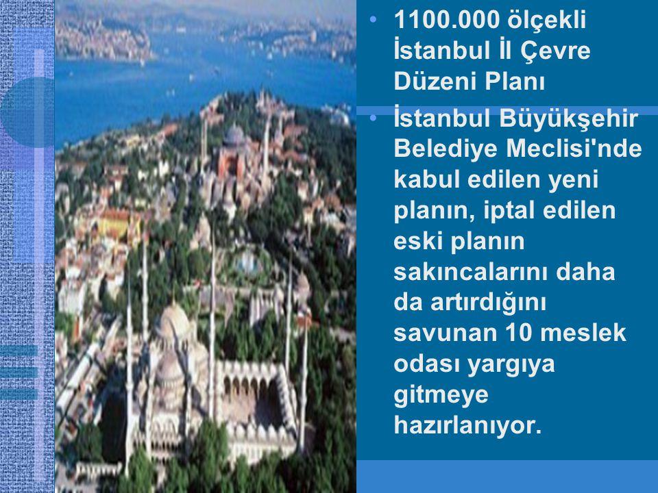 1100.000 ölçekli İstanbul İl Çevre Düzeni Planı