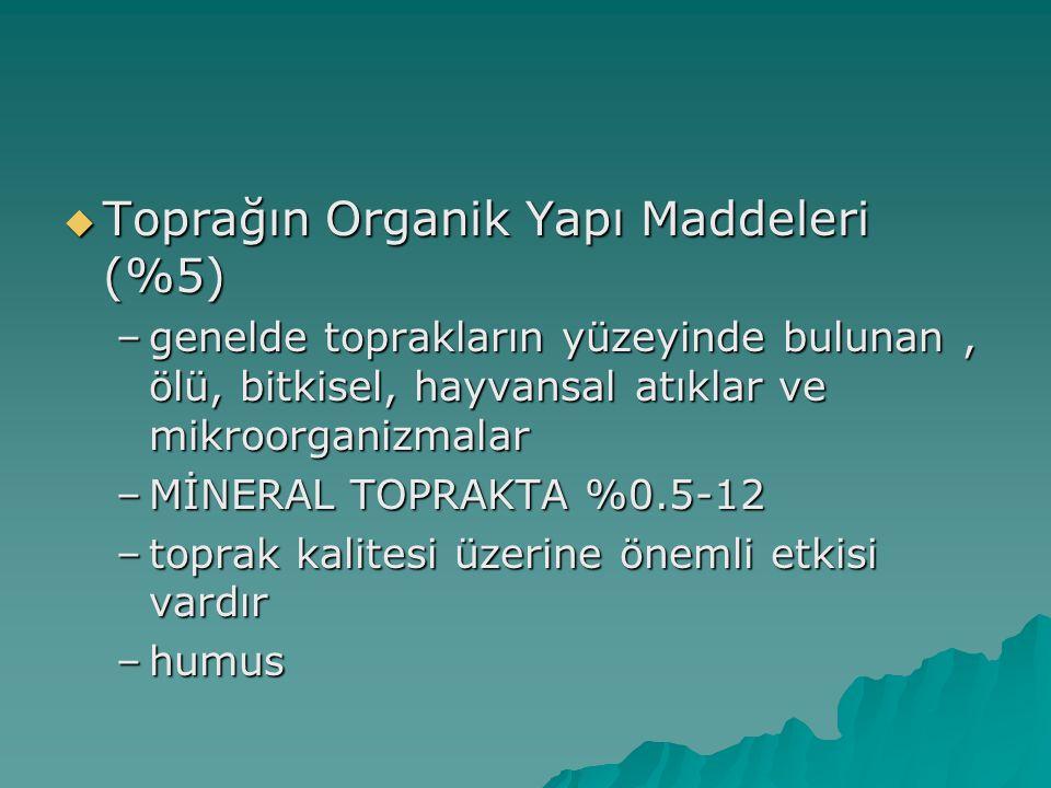 Toprağın Organik Yapı Maddeleri (%5)