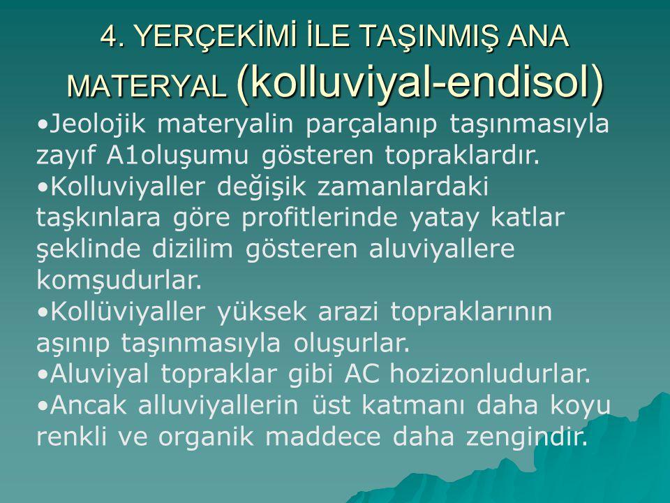4. YERÇEKİMİ İLE TAŞINMIŞ ANA MATERYAL (kolluviyal-endisol)