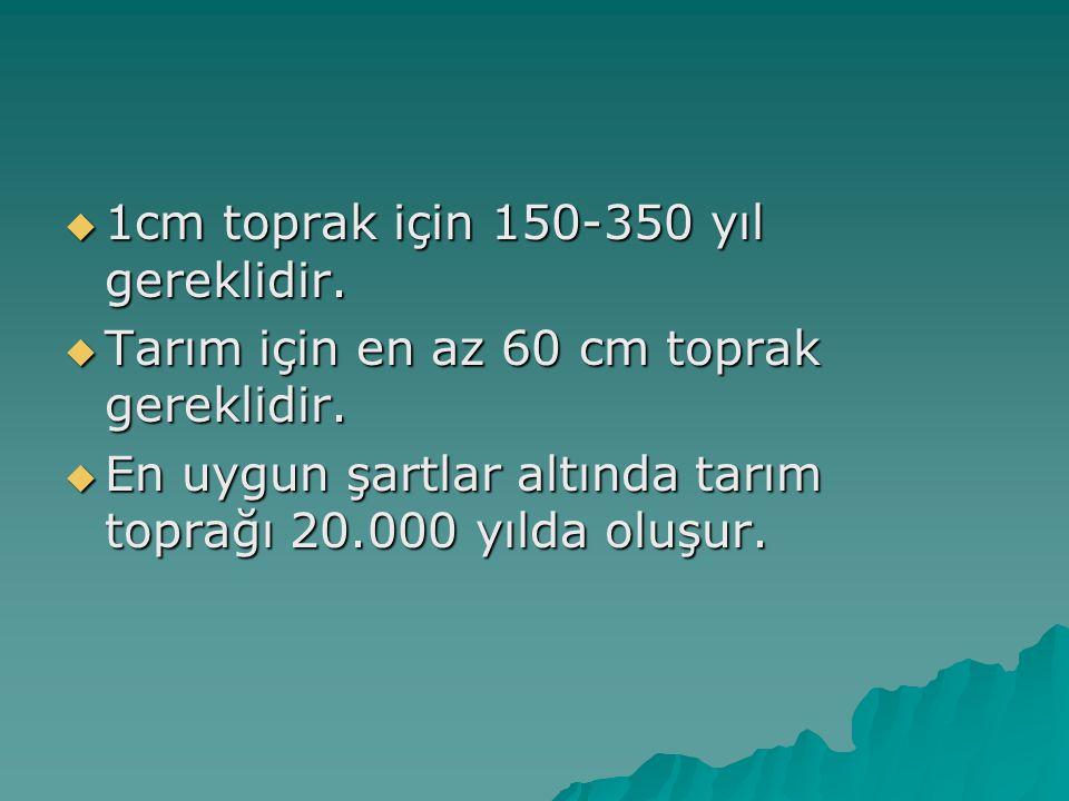 1cm toprak için 150-350 yıl gereklidir.