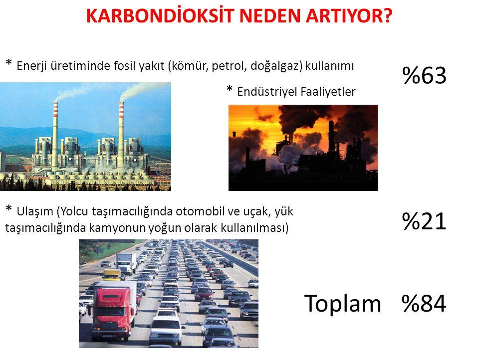 KARBONDİOKSİT NEDEN ARTIYOR