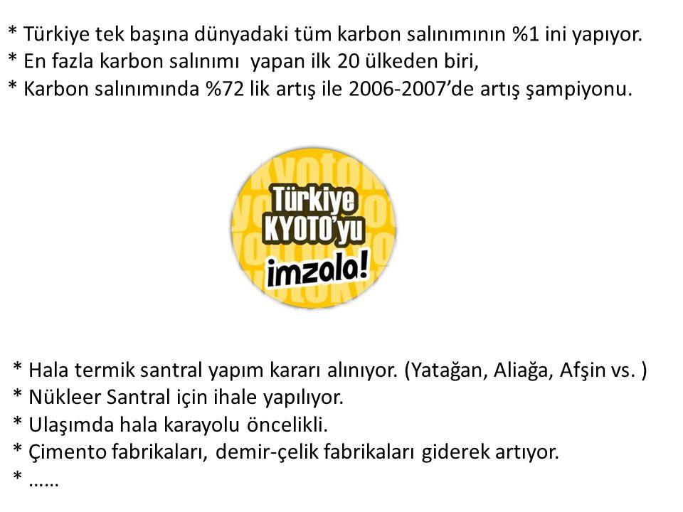 * Türkiye tek başına dünyadaki tüm karbon salınımının %1 ini yapıyor.