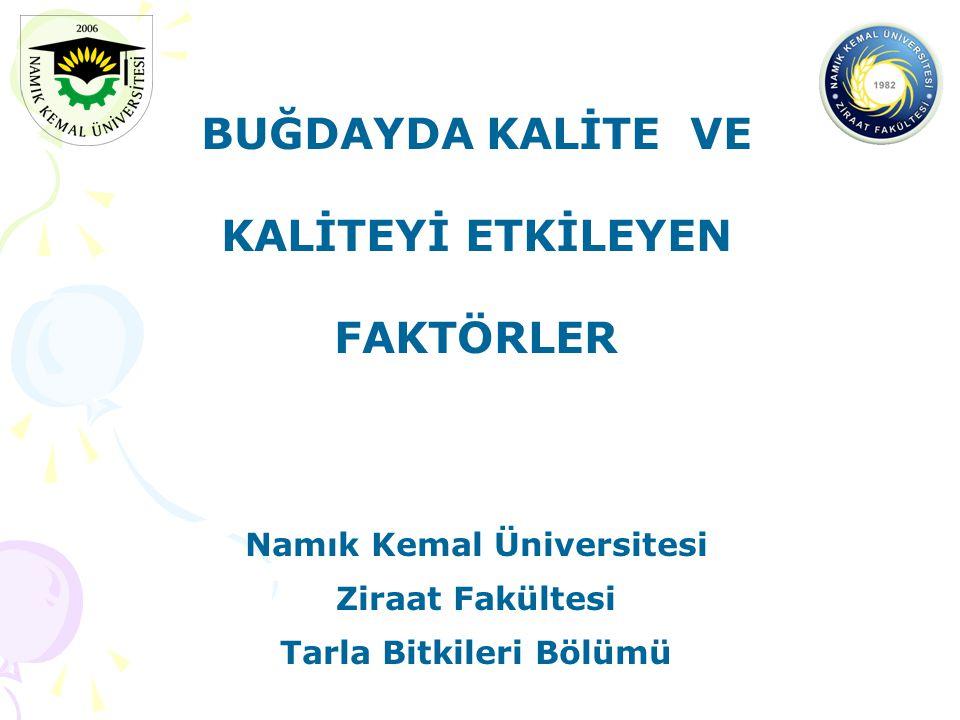 Namık Kemal Üniversitesi Tarla Bitkileri Bölümü