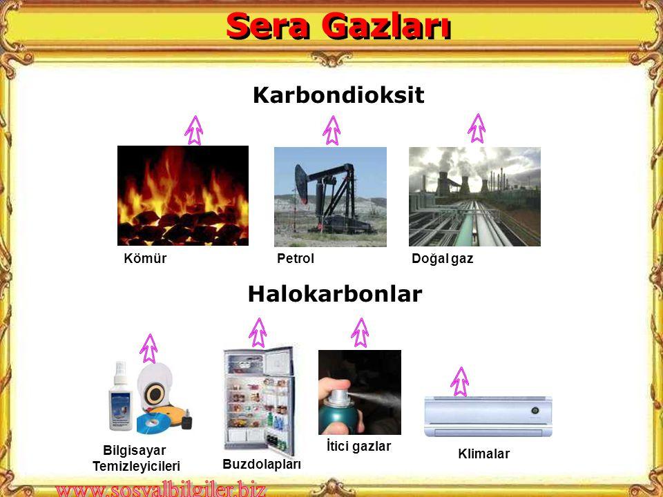 Sera Gazları Karbondioksit Halokarbonlar Kömür Petrol Doğal gaz