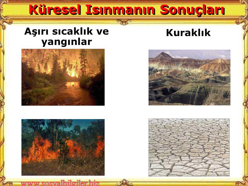 Küresel Isınmanın Sonuçları Aşırı sıcaklık ve yangınlar