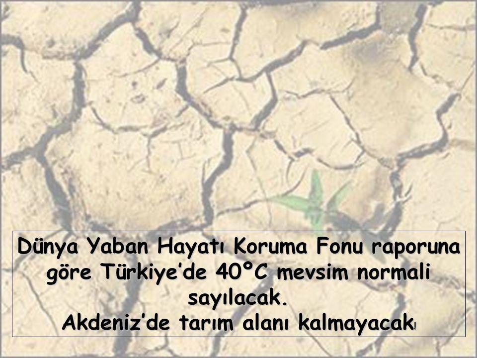 Dünya Yaban Hayatı Koruma Fonu raporuna göre Türkiye'de 40ºC mevsim normali sayılacak.