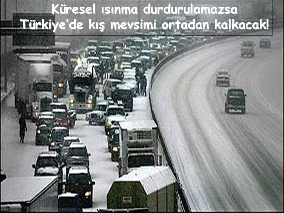 Küresel ısınma durdurulamazsa Türkiye'de kış mevsimi ortadan kalkacak!