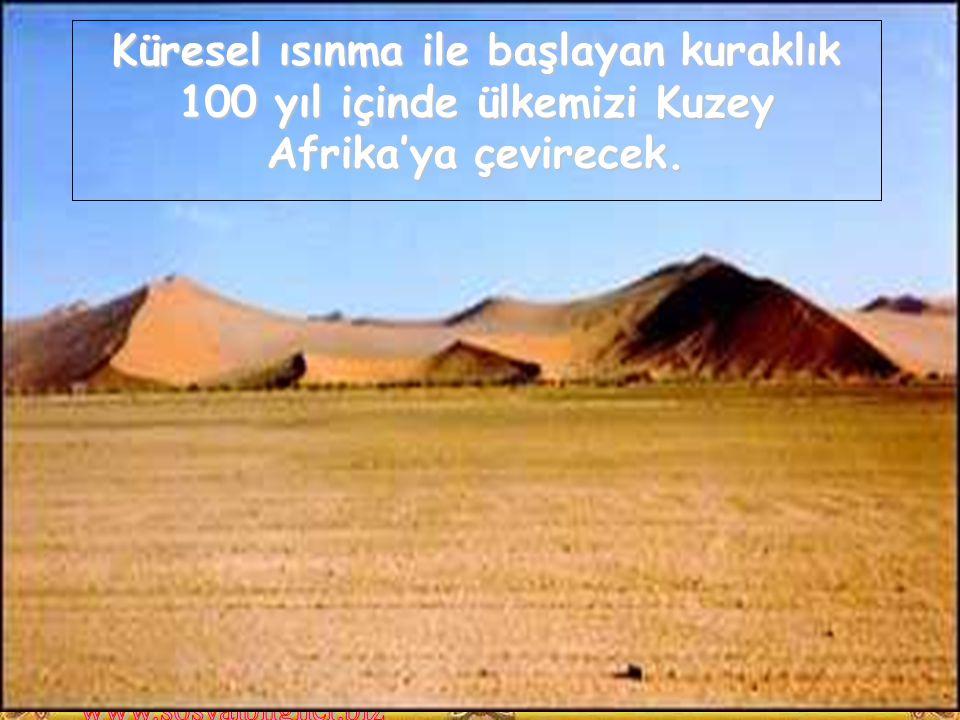 Küresel ısınma ile başlayan kuraklık 100 yıl içinde ülkemizi Kuzey Afrika'ya çevirecek.