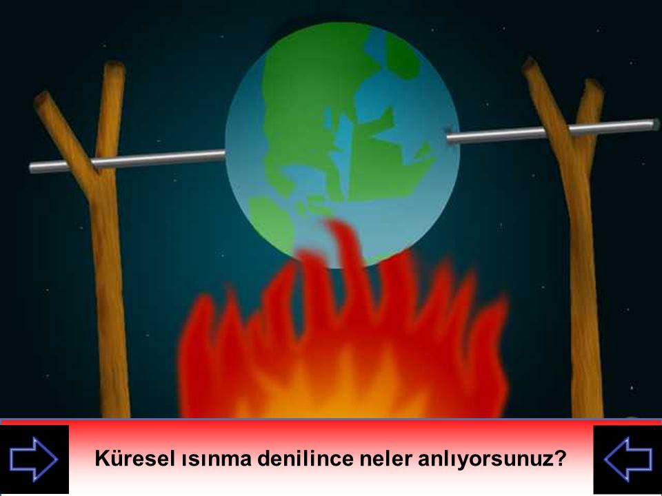 Küresel ısınma denilince neler anlıyorsunuz
