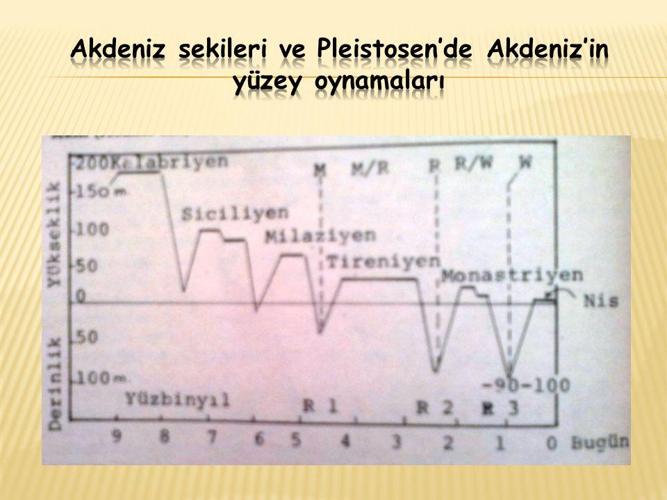 Akdeniz sekileri ve Pleistosen'de Akdeniz'in yüzey oynamaları