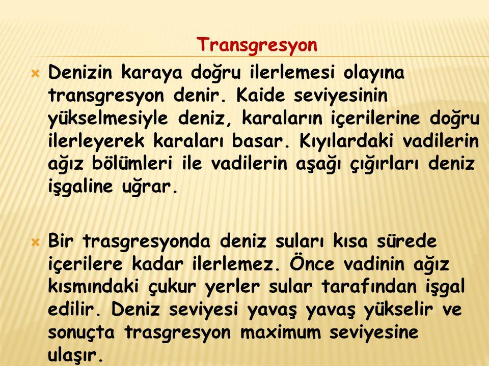 Transgresyon