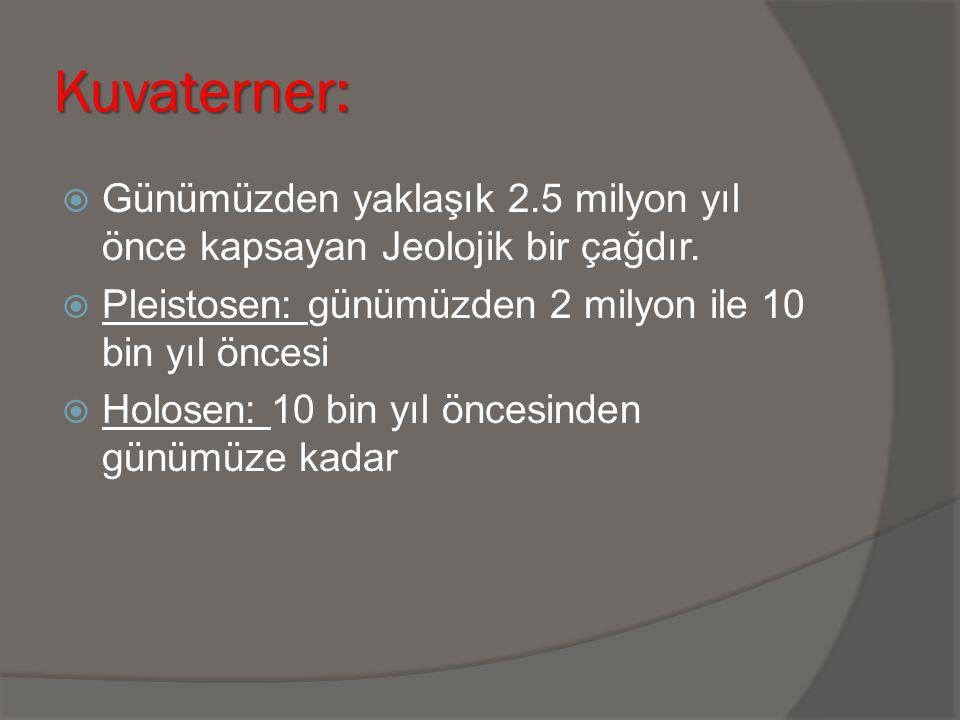 Kuvaterner: Günümüzden yaklaşık 2.5 milyon yıl önce kapsayan Jeolojik bir çağdır. Pleistosen: günümüzden 2 milyon ile 10 bin yıl öncesi.