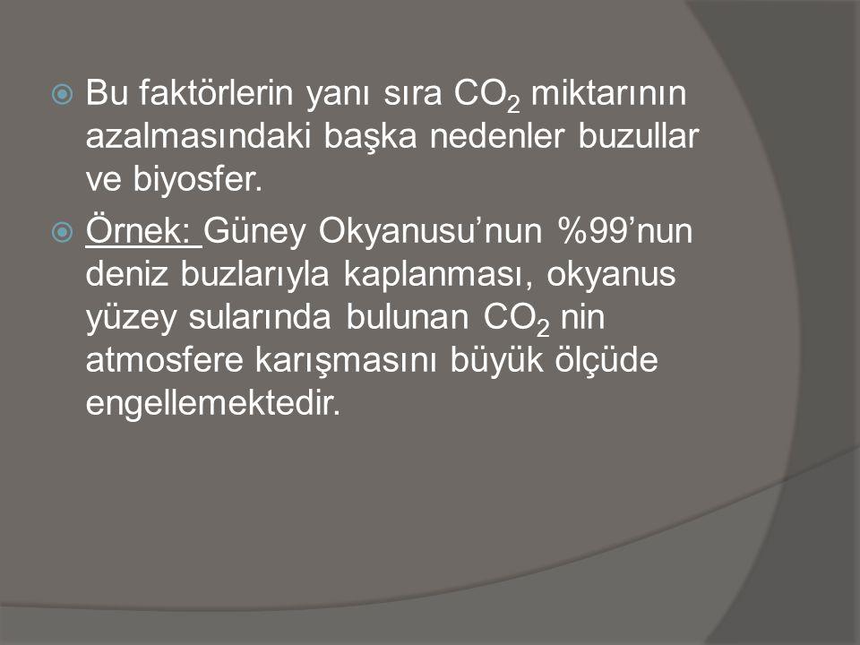 Bu faktörlerin yanı sıra CO2 miktarının azalmasındaki başka nedenler buzullar ve biyosfer.
