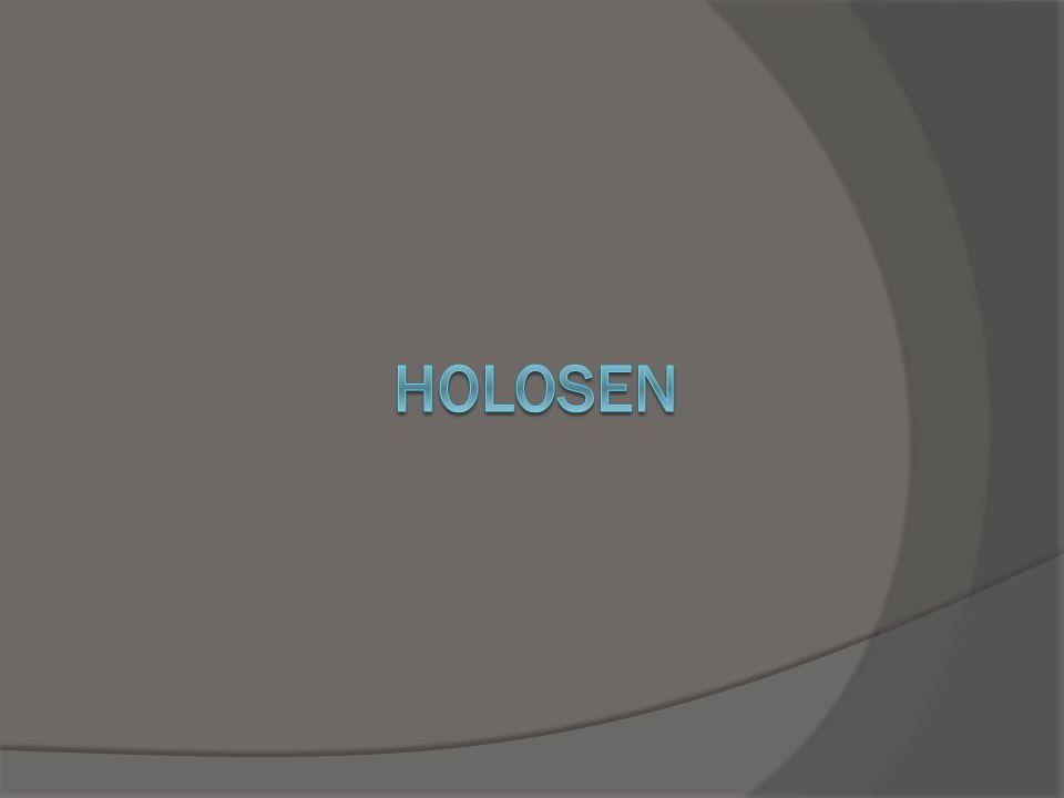 holosen