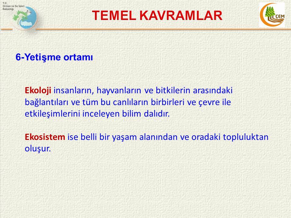TEMEL KAVRAMLAR 6-Yetişme ortamı